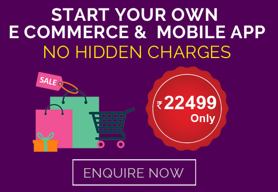 ecommerce web developers in cochin